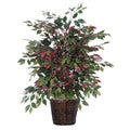 4-foot Capensia Extra Full Decorative Plant