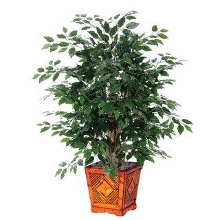 4 foot Ficus Extra Full Decorative Plant in Wood Pot
