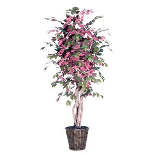Capensia Executive 6-foot Silk/ Polyester Decorative Plant