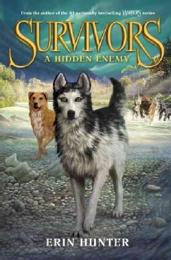 A Hidden Enemy (Hardcover)