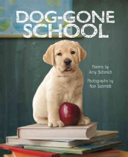 Dog-Gone School (Hardcover)