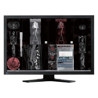 "Eizo RadiForce MX241W 24.1"" LCD Monitor - 16:10 - 13 ms"