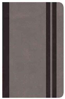 Holy Bible: RVR 160, Cenizo / Gray, Biblia clasica edicion especial / Bible Classic Special Edition (Paperback)