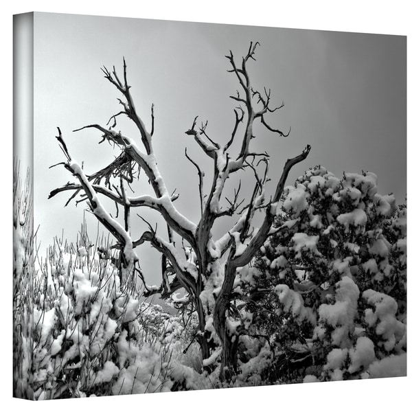 Mark Ross 'When Nothing Else Exists' Wrapped Canvas Art