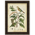 Therese Guerin 'Bird in Nature I' Wood Framed Art Print