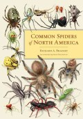 Common Spiders of North America (Hardcover)