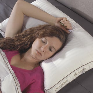 Max Support 300 Thread Count Back Sleeper Pillows (Set of 2)