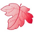Leaf Design Crimson Doilies (Set of 4)