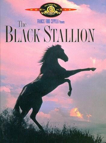 Black Stallion (DVD)