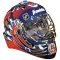NHL Team SX Comp GFM 100 Florida Panthers Goalie Face Mask