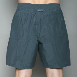 Speedo Men's Grey Twin Stripe Swimsuit