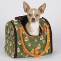 East Side Collection Monkey Business Green Small Pet Carrier