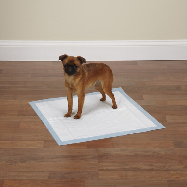 Clear Quest Value Puppy Pads (Case of 100) 10281702