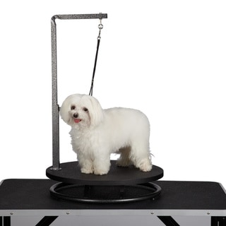 Master Equipment Small Pet Grooming Black Table