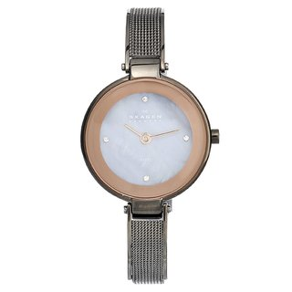 Skagen Women's Steel Slim Crystal Watch