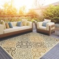 Outdoor/ Indoor Ivory/ Grey Area Rug