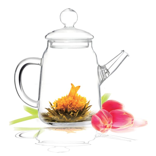 Tea Beyond Glass 16-Ounce Non-Dripping Hand Crafted Teapot Duo