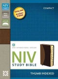 Holy Bible: New International Version, Tan / Burgundy, Italian Duo-Tone, Study Bible (Paperback)