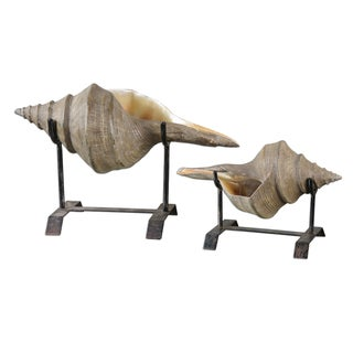 Conch Shell Sculptures (Set of 2)