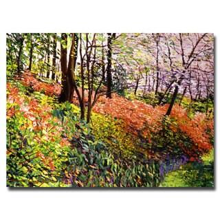 David Lloyd Glover 'Magic Flower Forest' Canvas Art