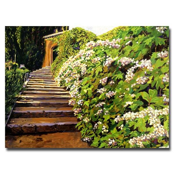 David Lloyd Glover 'Garden Staiway Tuscany' Canvas Art