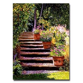 David Lloyd Glover 'Pink Daisies Wooden Steps' Canvas Art