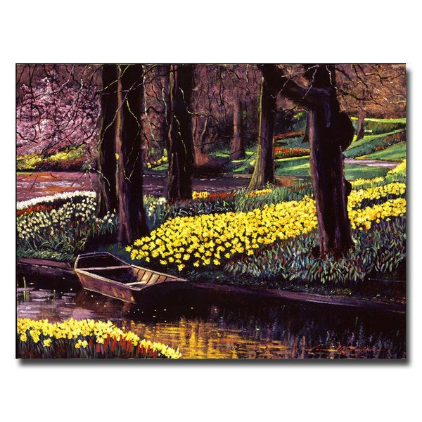 David Lloyd Glover 'Daffodil Park' Canvas Art