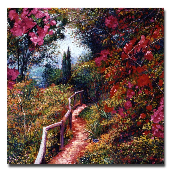 David Lloyd Glover 'Bougainvillea Trail' Canvas Art