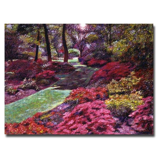 David Lloyd Glover 'Azalea Park' Canvas Art
