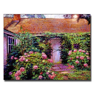 David Lloyd Glover 'Hydrangea Cottage' Canvas Art