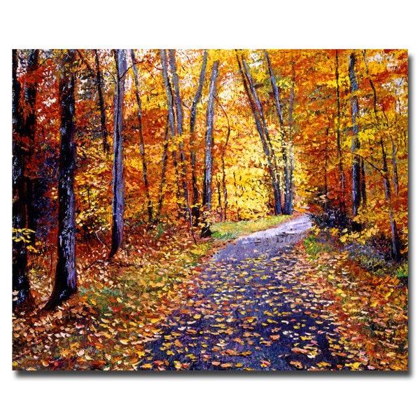 David Lloyd Glover 'Leaf Covered Road' Canvas Art