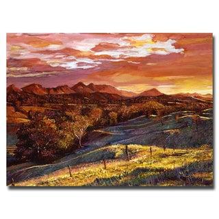 David Lloyd Glover 'California Dreaming' Canvas Art