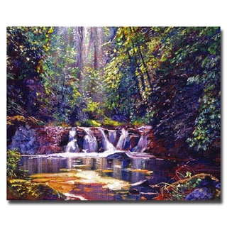 David Lloyd Glover 'Foaming Water Forest' Canvas Art