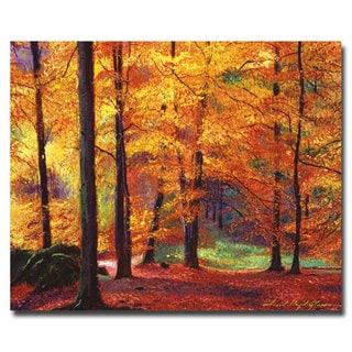 David Lloyd Glover 'Autumn Serenity' Canvas Art