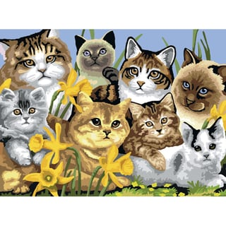 "Junior Large Paint By Number Kit 15-1/4"" X 11-1/4""-Cats Montage"