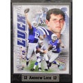 Indianapolis Colts Andrew Luck Photo Plaque (9 x 12)