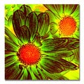 Amy Vangsgard 'Pop Daisies V' Canvas Art