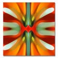Amy Vangsgard 'Tree Light Symmetry Red' Canvas Art