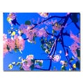 Amy Vangsgard ' Pink Flowering' Canvas Art