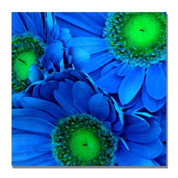 Amy Vangsgard 'Blue Gerber Daisies' Canvas Art