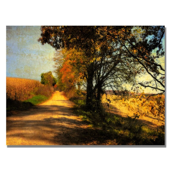 Lois Bryan 'Follow Your Road' Canvas Art