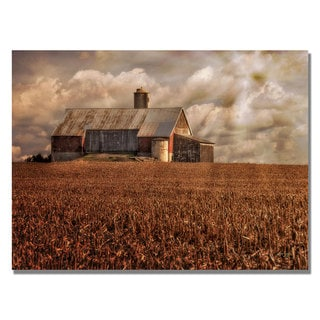 Lois Bryan 'Light for the Farm' Canvas Art