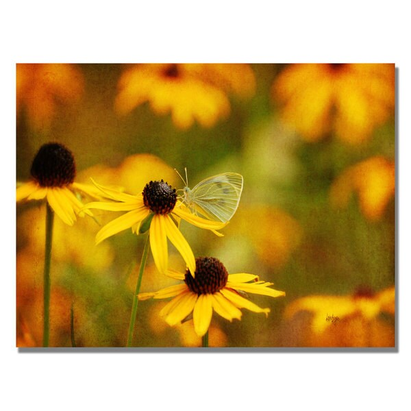 Lois Bryan 'Butterfly on a Flower' Canvas Art