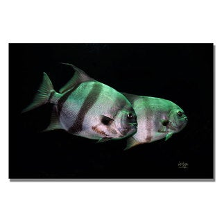 Lois Bryan 'Fish in the Dark' Canvas Art