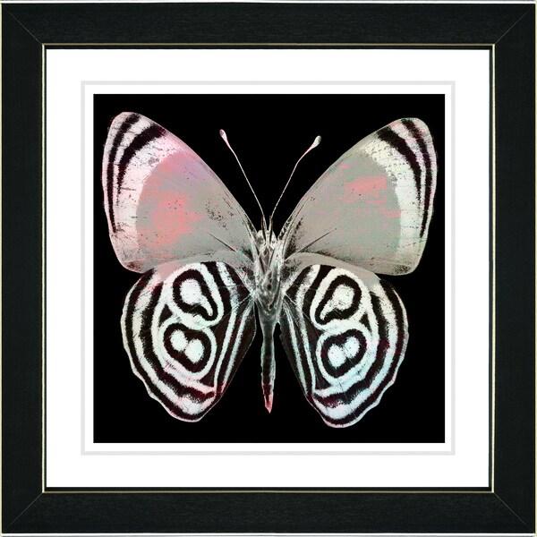 Studio Works Modern 'White Zebra Butterfly' Framed Print