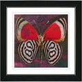 Studio Works Modern 'Red Zebra Butterfly' Framed Print