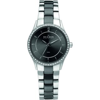 Skagen Women's Stainless Steel Two-tone Link Watch