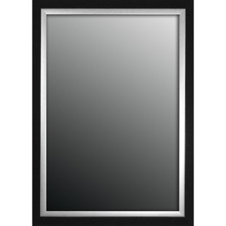 Natural Ebony Black With Silver Trim 26x36-inch Mirror