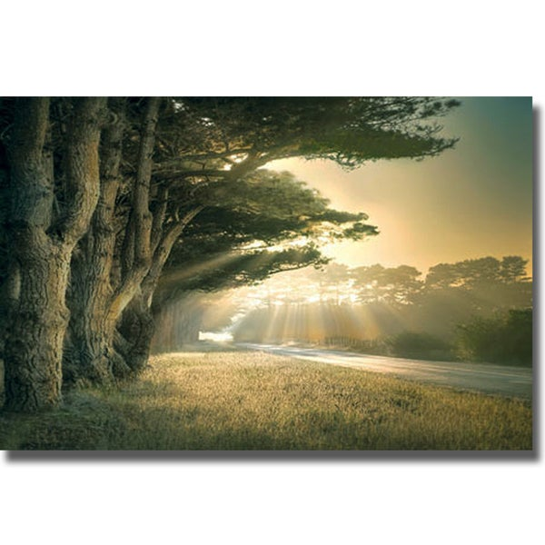 William Vanscoy 'No Place to Fall' Canvas Art