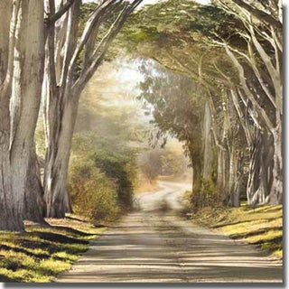 Harold Davis 'The Destination' Canvas Art